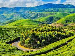 coonoor sight seeing