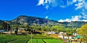 village taxi ooty